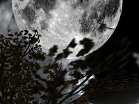 Yavin IV plateau at night
