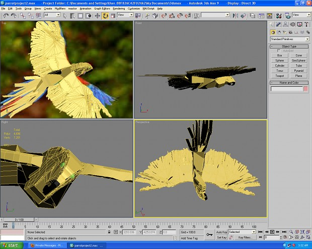 Parrot Almost completed model