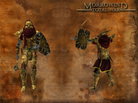 Redoran Border guards