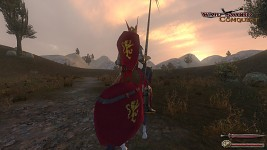 The lone knight