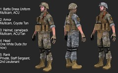 National Guard (beta 1) breakdown