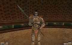 Nord silver spear