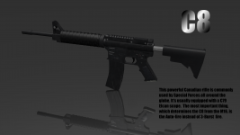 The new rifle C8