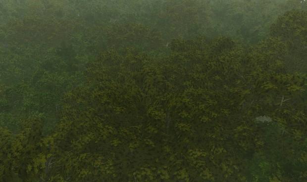 Firien Wood Canopy WIP