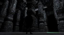 Dwarrodelf