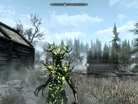 Spriggan Follower Mod