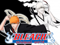 Bleach:Shinigami world