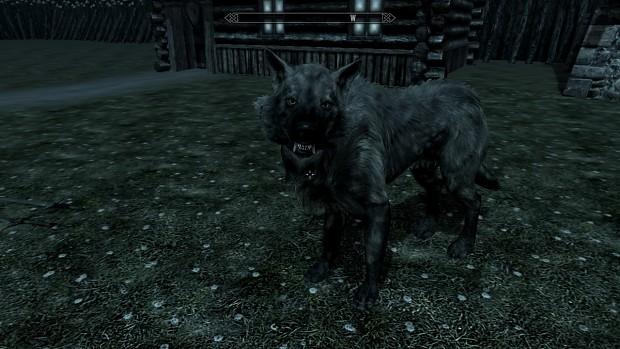 Belgarath wolf form 02