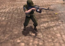 M16 In Action