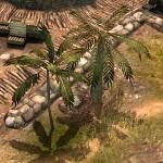 New Tree Model