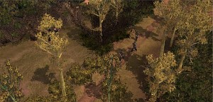 Vietcong Sniper