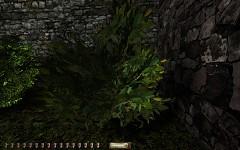 Improved Vegetation