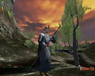 Elven Watchman at Amon-Sul
