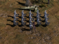 Arnor Soldiers