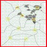 Progress of New Map
