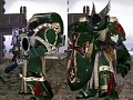 Dark Angels any one