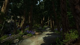 Enderal Screenshot