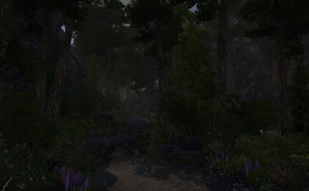Enderal in the early morning