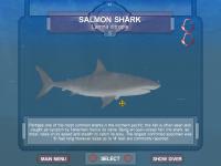 New Skin for Salmon Shark
