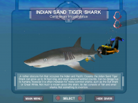 The New Indian Sand Tiger Shark