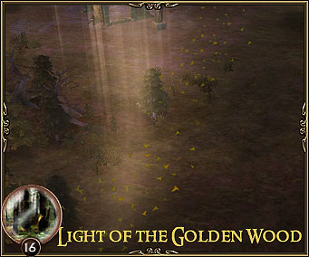 Light of the Golden Wood
