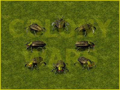 Colony Roach