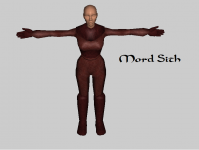 Mord Sith Costume
