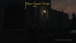 Palace Guard Armor