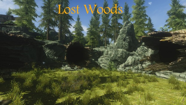 Lost Woods Concept