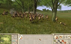 Amazons: Total War - Recalesced