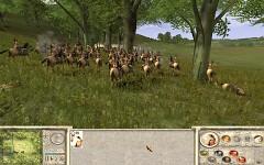 Amazons: Total War - Recalesced