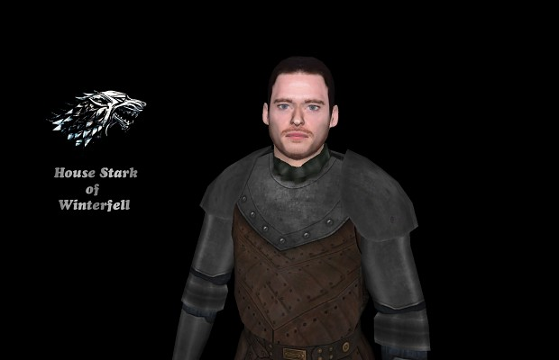 Robb Stark - The King in the North! ( w.i.p)