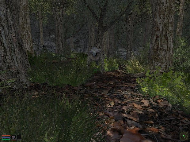 Vorndgad Forest