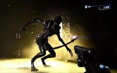 Aliens Colonial Mariens / Cilitbäng Pack / NoGrain