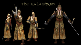 The Galadhrim Warriors