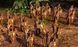 The Mirkwood Soldiers - In Game