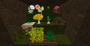 plants, flowers & saplings