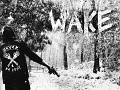 WAKE (Cry of Fear)
