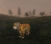 Ridable Tiger (Version 0.72)