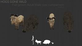 Hogs Gone Wild! WIP