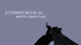 SturmGewehr 44 • Winter Camouflage #Unused Concept