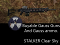 Buyable Gauss Guns and Ammo!