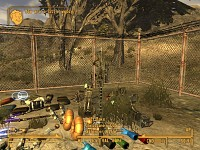 FNV simple mods project