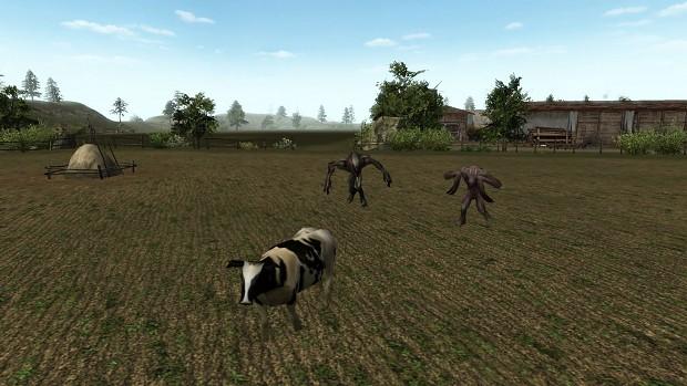 Run little cow ! Run !