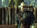 The Witcher 2: Island of Convicts