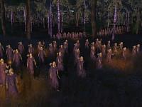 Vanyar Sentinels