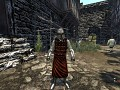 The Grand Enhancement (Mount & Blade: Warband)