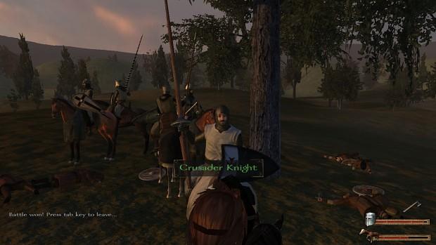 Crusader Knight variations