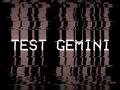 Test Gemini