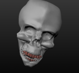 Proof of Concept: Skull